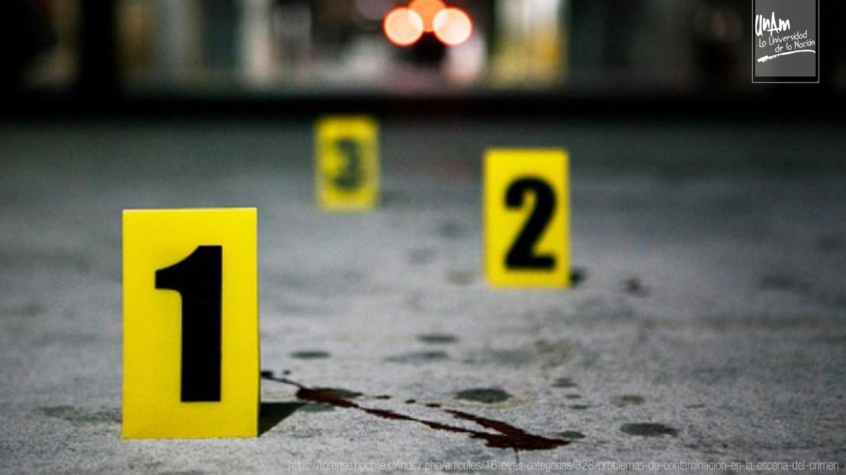 2° B  Lic. en Criminalística Ejecutivo